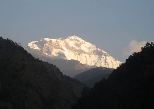 Dhaulagiri Sanctuary